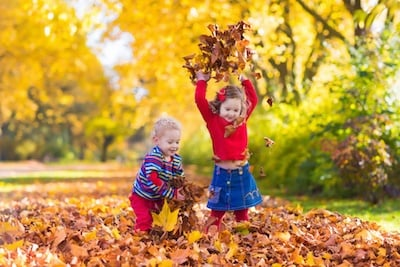 For Families: Fall Activities in Northeast Ohio
